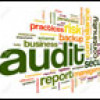 Human Resources Audits