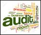 Human Resources Audits
